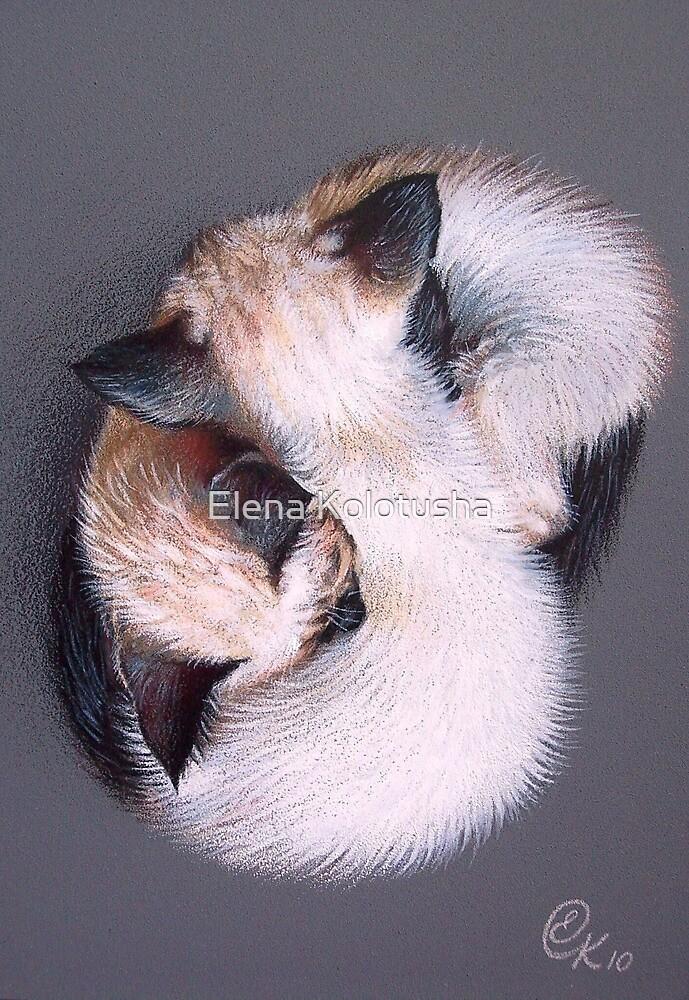Two kittens by Elena Kolotusha