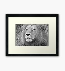 Portrait of a King of the Bush! Framed Print