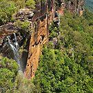 Fitzroy Falls by Werner Padarin