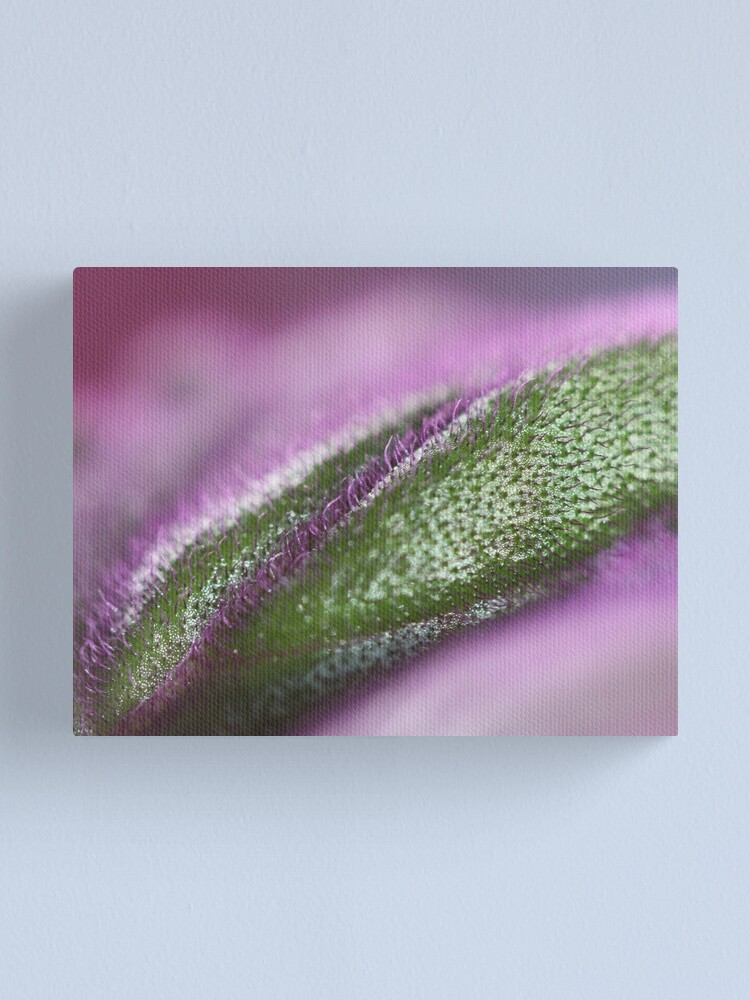 Alternate view of weird colours Canvas Print