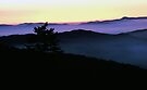 SUNRISE ,CLINGMANS DOME by Chuck Wickham