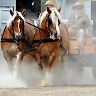 The dusty duo by Alan Mattison