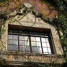Old Style Window by CarmenLygia