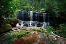 Afternoon Delight_Somersby Falls by Sharon Kavanagh