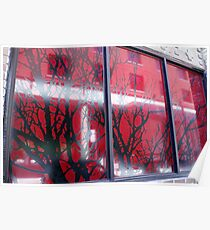 Branches in Windows Poster