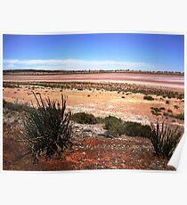 Salt Flats (Lake Miranda), WA Goldfield Poster