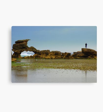 Checking the surf Canvas Print