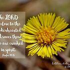 Psalm 34:18 von Kathleen Daley