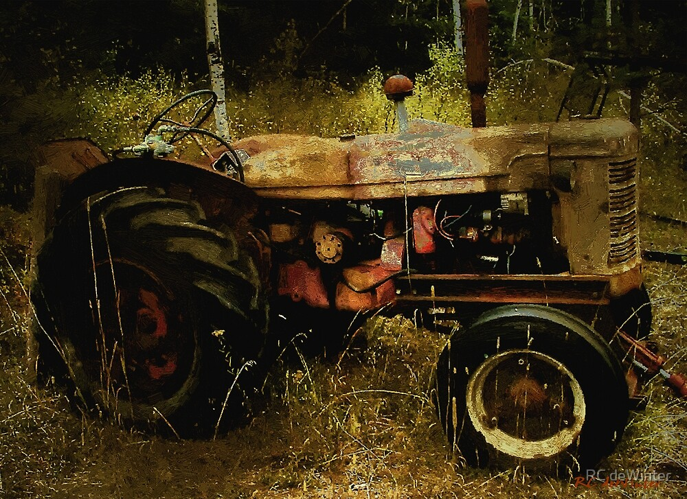 Relic in the Field by RC deWinter