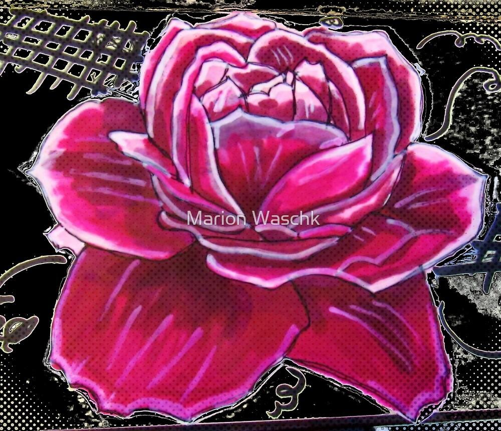 Pink Rose von Marion Waschk