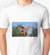 Ferruginous Hawk T-Shirt