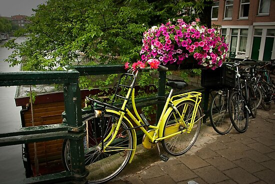 Yellow bike and pink flowers by steppeland