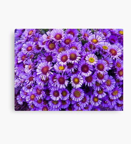 Purple wall Flowers Canvas Print