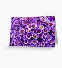 Purple wall Flowers Greeting Card