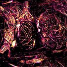 Chaos theory by Susan Ringler