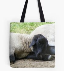 sheep snoozing by Sutton Bank Tote Bag