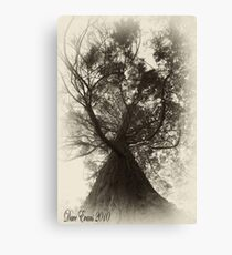 Here since Victorian times Canvas Print