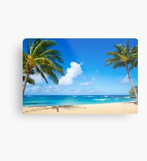 Kokosnuss-Palme auf dem Strand in Hawaii, Kauai Metalldruck