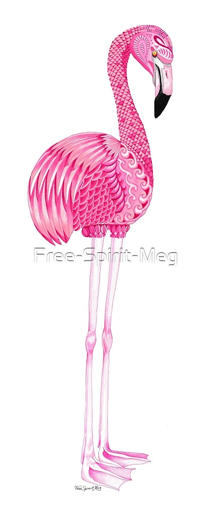 Flamingo with Long Legs by Free-Spirit-Meg