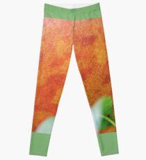 The Giant Peach Leggings