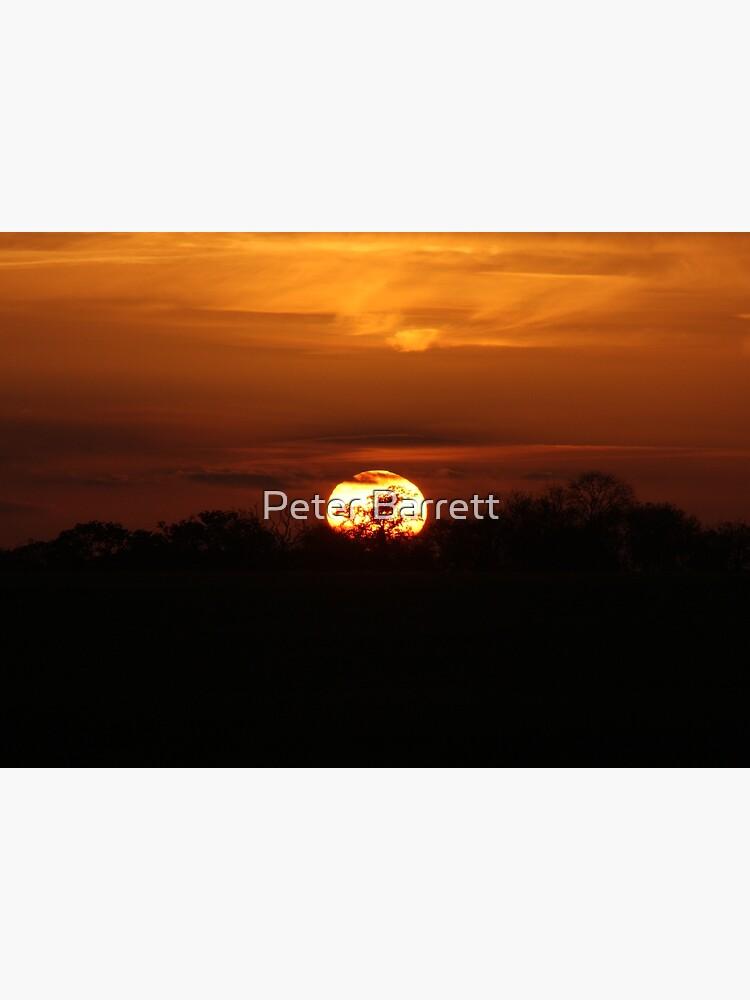 Golden Sunset by hartrockets