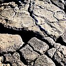 Cracks in the earth. by Thomas Anderson