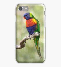 Fluffy Rainbow iPhone Case/Skin