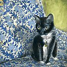 Sweet Tuxedo Cat on Blue Floral Chair by minorsaint