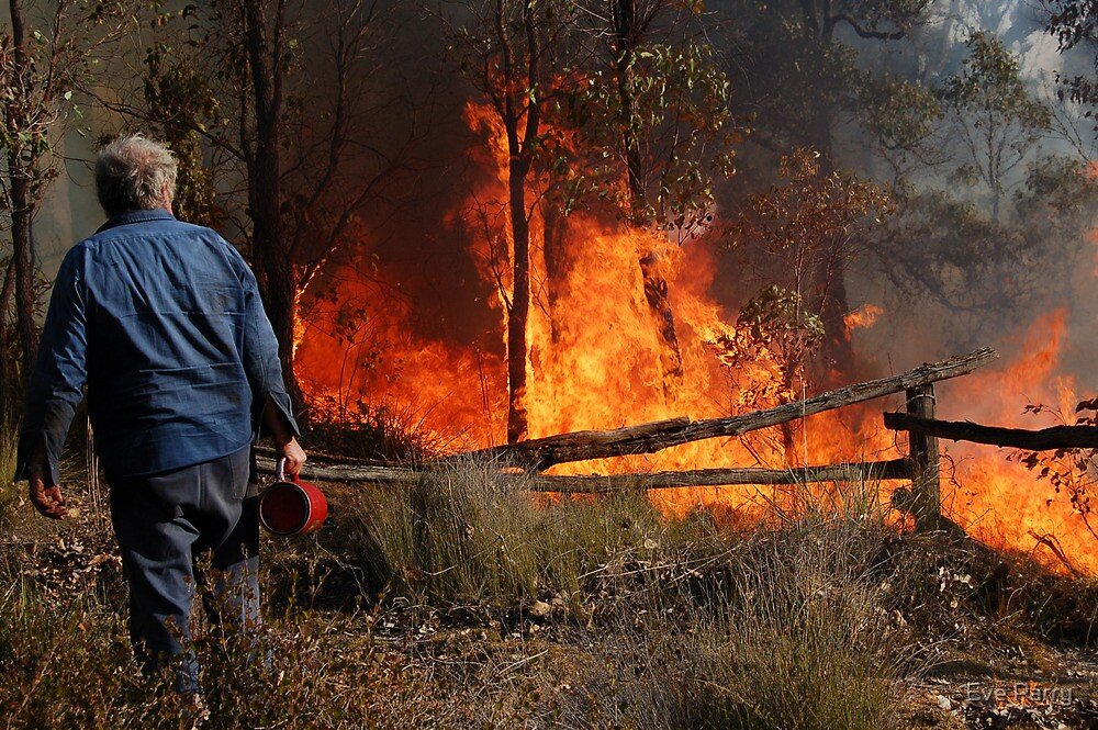 A Controlled Burn by Eve Parry