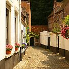 Beguinage - Lier - Belgium by Gilberte