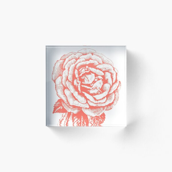 """Rose drawn in vintage style in color """"Living Coral"""" Acrylic Block"""