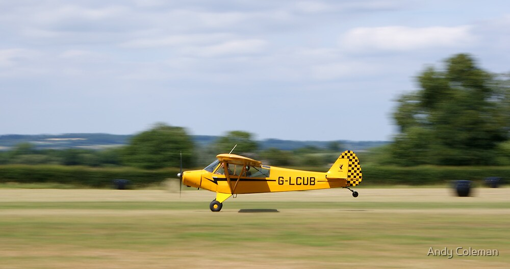 Piper L-18C Super Cub Aeroplane by Andy Coleman