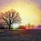 Winter in Tooting Bec Common by Ludwig Wagner