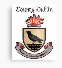 County Dublin Ancient Crest Metal Print