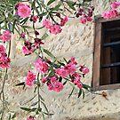 Pink flowers by eleean0r