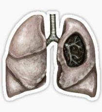 Anatomical lungs Sticker
