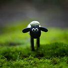 Shaun the Sheep by Sarah Moore