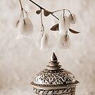 Thai Still Life by AnnieD