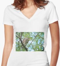 Black Crowned Night Heron Women's Fitted V-Neck T-Shirt