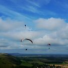 Paragliders by Sophia Grace