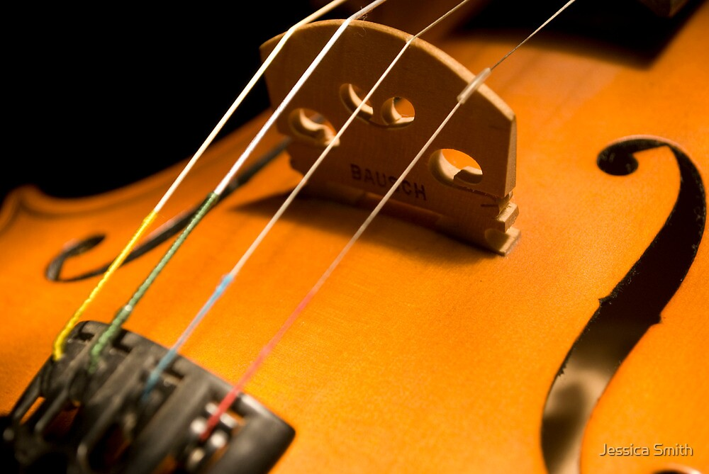An intimate image of a Fiddle by Jessica Smith