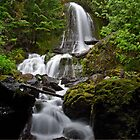 Mount Rainier National Park - Waterfall  by JThill