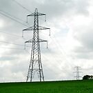 Pylon by Sophia Grace