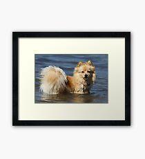 Water Girl Framed Print