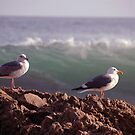 Two Birds One Wave by Tom Deters