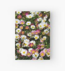 Candy Coloured Daisies Hardcover Journal