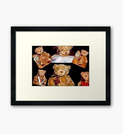 Teddy © Framed Print