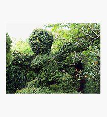 Cupid topiary Photographic Print
