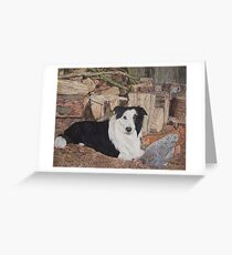 border collie in log shed with chickens portrait Greeting Card