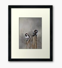 """""""Spuggies on the fence"""" Framed Print"""